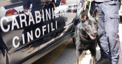 carabinieri cc 112 cinofili controllo blitz giorno (1)