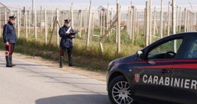 carabinieri cc 112 campagna controllo caporalato giorno generica