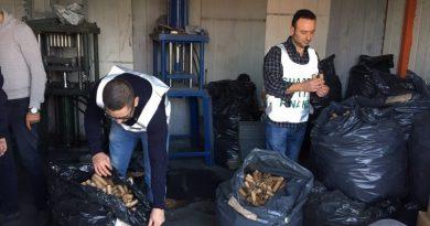 guardia di finanza gdf 117 fiamme gialle sequestro fuochi pirotecnici botti illegali (3)