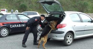 carabinieri cc 112 posto di blocco auto cane cinofili