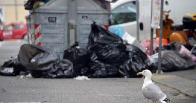 rifiuti strada cassonetti