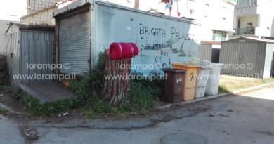 aversa tagli alberi palazzine Unrra Casas (3)