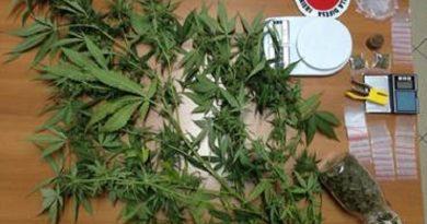 carabinieri-cc-112-marijuana-stupefacenti-1