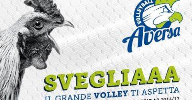 sigma aversa volleyball aversa campagna abbonamenti (1)