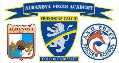 Albanova Foxes Academy