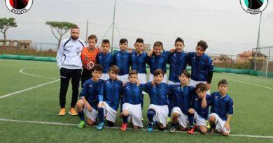 albanova-foxes-academy